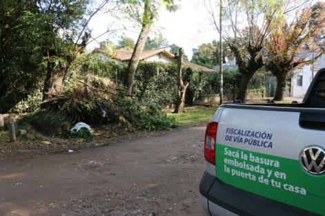 Prohibido podar en Berazategui (2)