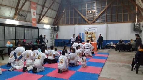 EXPO MARCIAL EN EL POLIDEPORTIVO N° 4 DE VILLA MITRE (2)
